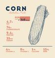 health benefits of corn vector image vector image
