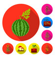 plant vegetable flat icons in set collection for vector image