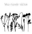 Set silhouettes of wild flowers vector image vector image