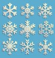 snowflakes set with transparent shadow winter vector image vector image