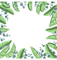 tropical background with banana leaves vector image vector image