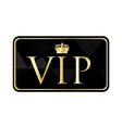 Golden vip pass vector image