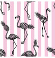 half flamingo stripe pink background vector image