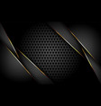 luxurious dark background with gold lines vector image vector image
