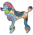 poodle colorful silhouette vector image vector image