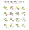 set retro icons edible seeds and grains vector image