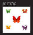 flat butterfly set of violet wing monarch moth vector image