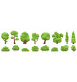 green trees forest or garden bush and tree woody vector image vector image