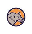 Grey Wolf Head Angry Circle Cartoon vector image vector image