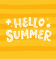 hello summer poster with hand written lettering vector image vector image