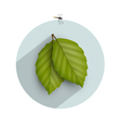 Leaf icon with long shadow vector image vector image