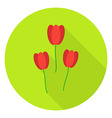 Three Tulips Garden Flowers Circle Icon vector image vector image