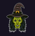 witch head character colorful vector image vector image