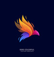 abstract bird template vector image