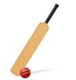 cricket bat and ball 03 vector image vector image