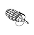 grenade on white background vector image
