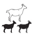 hand drawn goat set vector image vector image