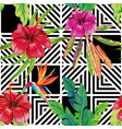 hibiscus bird paradise leaves geometric black vector image vector image