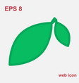 leaf icon or element isolated vector image vector image