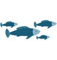 ocean with marine life reprsentatives sea fish vector image