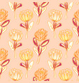 orange protea flower seamless pattern vector image