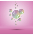 Rainbow bubbles multicolor soap bubble vector image