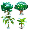 tropical trees and plants frozen under the snow vector image