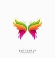 butterfly template vector image vector image