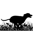Dog in the meadow vector image vector image