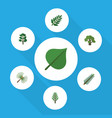 flat icon natural set of acacia leaf tree spruce vector image vector image