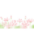 pink blooming watercolor cosmos field background vector image