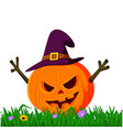 scary pumpkin using hat vector image