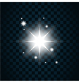 Shine star sparkle icon 2 vector image vector image