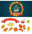 Autumn background and design elements vector image vector image