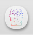 bag with vegetables app icon vector image