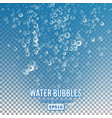 bubbles in water on transparent background glossy vector image vector image
