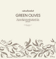 decorative natural botanical sketch template vector image vector image