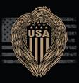 eagle wing annimal flag usa america vintage vector image