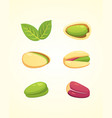 set pistachio nut in cartoon vector image vector image