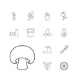 13 plant icons vector image vector image
