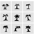 black palm icon set vector image vector image