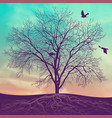 winter tree at sunset vector image vector image