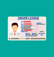 car driver license identification card with photo vector image
