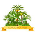 card with tropical palm trees exotic tropical vector image vector image