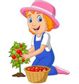 cartoon little girl harvesting tomatoes vector image