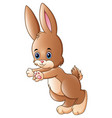 cute little rabbit cartoon isolated on white backg vector image