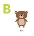 Letter B Bear Zoo alphabet English abc letters vector image vector image