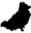 pomeranian silhouette vector image