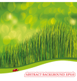 spring background with ladybird vector image vector image