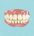 Teeth vector image vector image